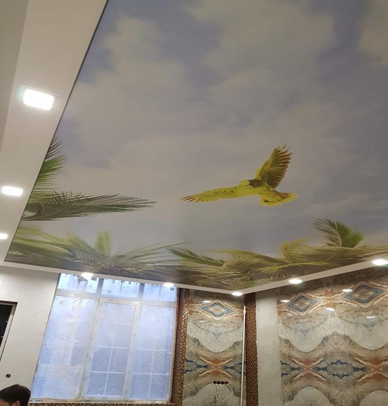 фотопечать тропики на потолке