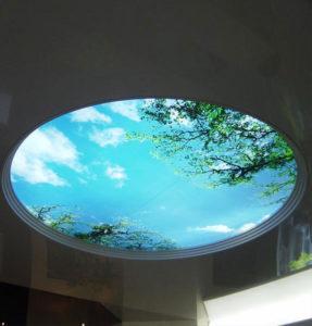 фотопечать природа на потолке